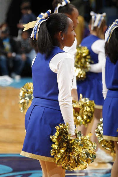 Hornets Timberwolves 1/13/11